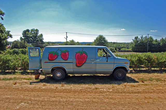Strawberry Van at Butlers Orchard