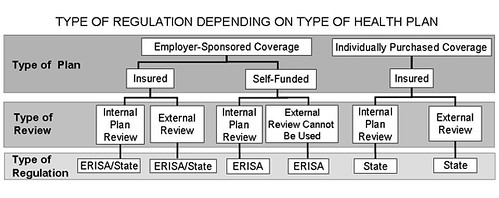 health insurance external review regulatory patchwork