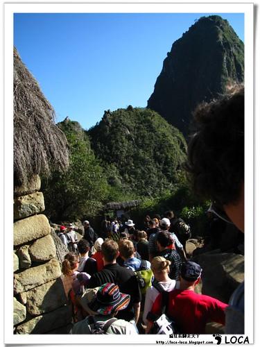 Machu PicchuIMG_0532.jpg