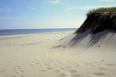 Stock~ Beach