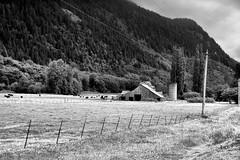 Cascade Farm B&W