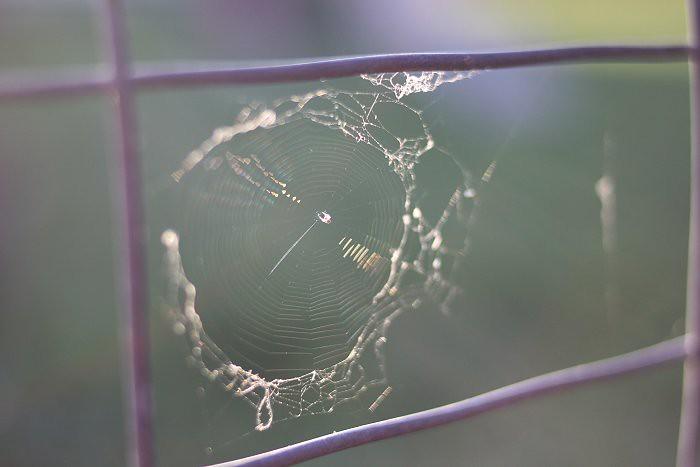 08-03-web2