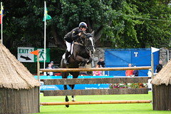 Michael Whittaker riding Trappist (Stanthefan) Tags: horses dublin mare dam equestrian sire irl rds showjumping countydublin foal eventing republicofireland failteireland speedstakes bewleyshotelsspeedstakes bewleyshotels