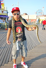 Man with Snake (thoth1618) Tags: nyc newyorkcity ny newyork man beach brooklyn coneyisland snake african boardwalk python ballpython royalpython photooftheday coneyislandboardwalk pythonregius brooklynny coneyislandbeach coneyislandbrooklyn africanpython brooklynusa manwithsnake coneyislandbeachandboardwalk