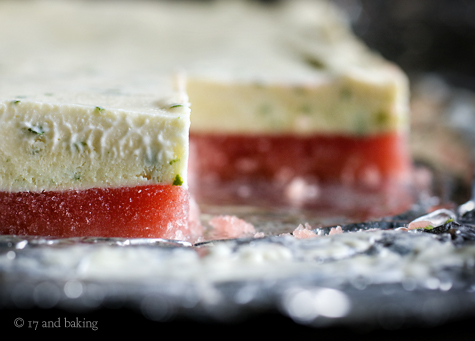 Frozen Watermelon Basil-Lime Bars