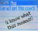 can w3 gel this coach blog button