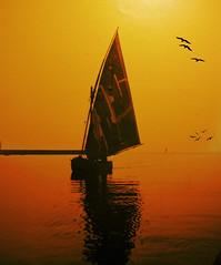 Sunset on the sea - Summer 1940  in Viareggio (Italy)