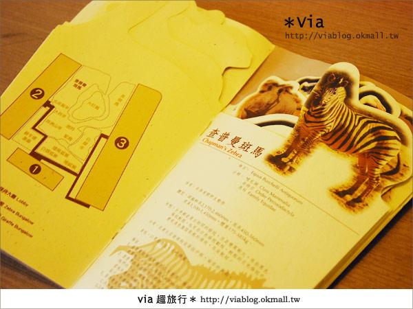【新竹住宿】來去和動物住一晚~關西六福莊生態渡假旅館41