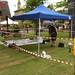 fen-edge-festival-2009-006