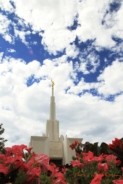 TAW Denver Temple2