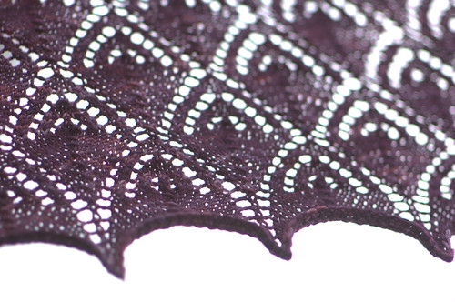 lacy close up 3