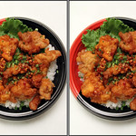 IMG_4899 唐揚げ丼 (parallel 3D) thumbnail