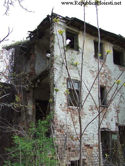 Casa Z(usserman) C - 2007 - 4