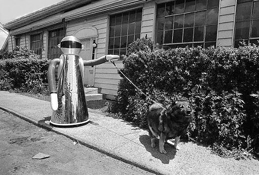 Robot Dog Walker 1978