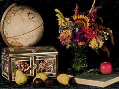 Still Life with Fruit, book and flowers (Julie Frances Photography) Tags: flowers stilllife apple fruit tin glasses book globe nikon pears plums cls lebkuchen d300 polestar creativelighting abigfave flickraward artofimages