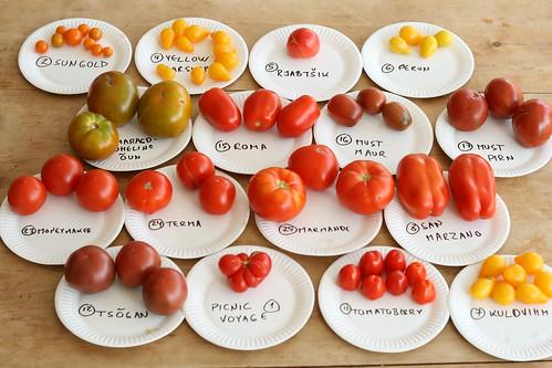 Tomato tasting party / Tomatite degusteerimine