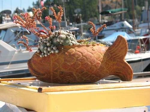 Fishy Planter