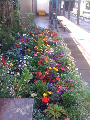 West Kensington Tube - Underground in Bloom