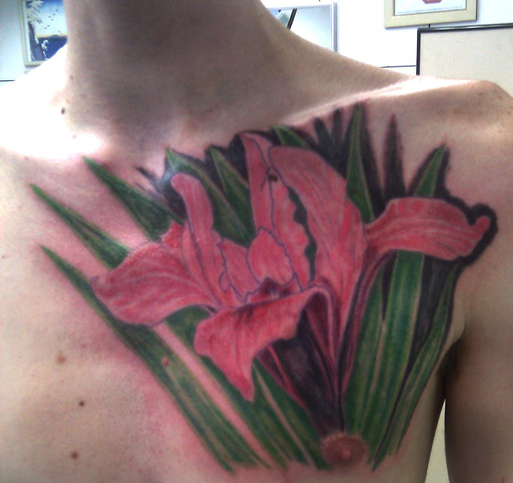 The worlds best photos of epiderme and tattoo flickr hive mind tatuagem iris flower tattoo micaeltattoo tags art tattoo skin drawing tatoo pele tatuagem izmirmasajfo