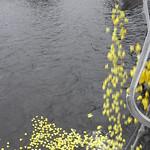 1008 28 Children First Raft Race (95) thumbnail