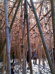 Doug and Mike Starn - Big Bambú