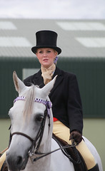 towerlands top hat and tails (pg tips2) Tags: show summer horses horse international arab ponies arabian aug 2010 equus arabs arabians equines towerlands arabhorse arabhorses ukiahs