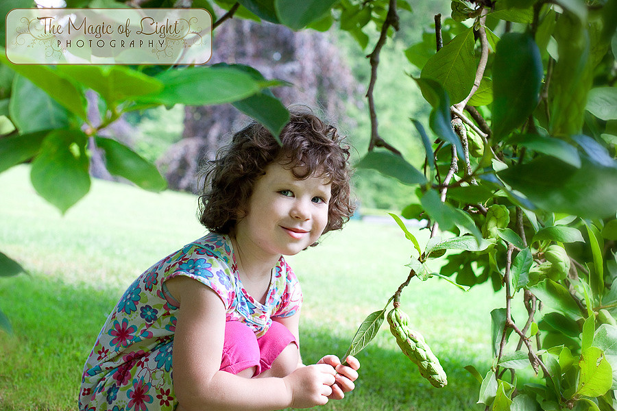 Pod drevesi Blog-1