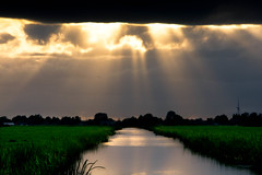Open the curtains, turn the lights on (drbob97) Tags: lighting light sunset sky sun sunlight netherlands clouds river dark utrecht nederland meadow wolken zon aa sunbeams zonlicht ter mygearandmepremium mygearandmebronze mygearandmesilver mygearandmegold mygearandmeplatinum