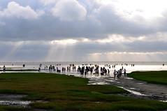 Halo beach (Vincent_Ting) Tags: sky nature water nikon taiwan formosa 台灣 高美