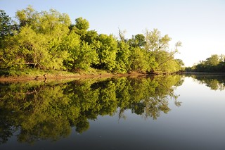 Morning Reflections on The Lower Colorado River - Austin, Texas