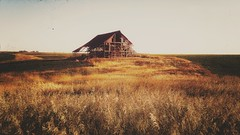 whispers in the wind... (BillsExplorations) Tags: barn farm abandoned decay forgotten ruraldecay rural country prairie whispers wind grass illinois abandonedillinois old ruins barnsandfarms sepia