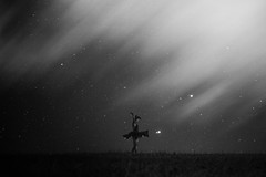 The Lost Pieces (Violet Paradise (mostly off)) Tags: woman female girl dance night sky wholeness space spiritual bw blackwhite ballerina ballet goddess bliss blissfulness