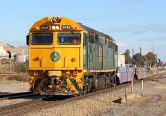 1173 Dry Creek 06/07/2017 (Dom Quartuccio) Tags: sct 1173 8026 cqwy wagon train trains transfer railway rail railroad railpage sbr cfcla greentrains shuttle alco