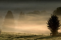 Morning mood... (rolfspicture) Tags: morning nature fog germany landscape mood sauerland bestcapturesaoi elitegalleryaoi