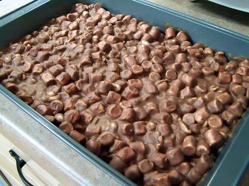 Nut Goodie Bars