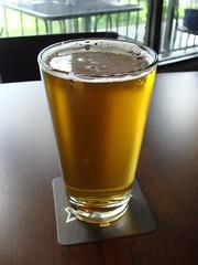 Salt Spring Ales Golden Spike Ale (knightbefore_99) Tags: beer real bc cerveza ale craft commercialdrive staugustine camra pivo thedrive goldenspike saltspringales