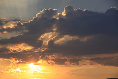 Amanzingwe skies