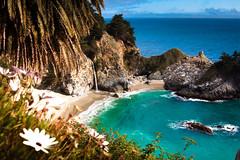 [フリー画像] 自然・風景, 海, ビーチ・砂浜, アメリカ合衆国, カリフォルニア州, 201007010100