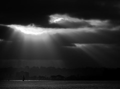 gliders (andrew c ko) Tags: ocean light two bw reflection clouds bay ray sandiego shining gliders