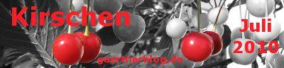 Garten-Koch-Event Juli: Kirschen  [31.07.2010]