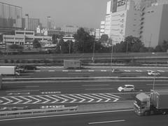 >>>>>>>>>> (akhr1961) Tags: superhighway trainwindow r10 indications