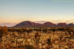 Kata Tjuta at sunrise (simone_a13) Tags: sunrise desert australia outback katatjuta northernterritory
