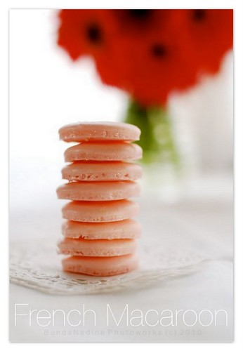 French Macarons (shell only)