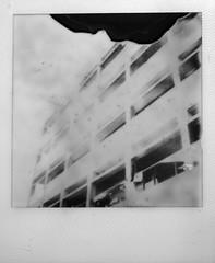 structured (Kenneth McNeil) Tags: film analog polaroid sx70 sydney australia oldschool australien sonar pola 2010 polaroidsx70 onestep sx70film sonaronestep kennethmcneil summer2010