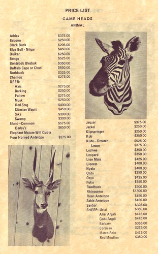 20 From Bischoff's Expert Taxidermists catalog