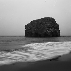 Marsden Rock (boscoppa) Tags: uk sea england bw 120 6x6 beach rock zeiss south north east shore ikon tyneside ilford fp4 marsden tyneandwear nettar northeastengland