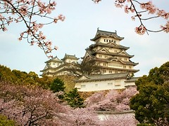 Himeji Castle in Japan (Hopeisland) Tags: pink flowers trees plant flower tree nature japan cherry spring blossoms april sakura cherryblossoms colourful soe 2010 himejicastle       4        theunforgettablepictures
