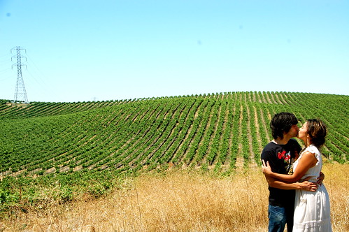 kissing near the vineyards