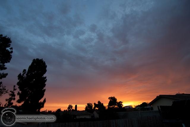 Backyard Sunset 71510 © Michael Klayman-001