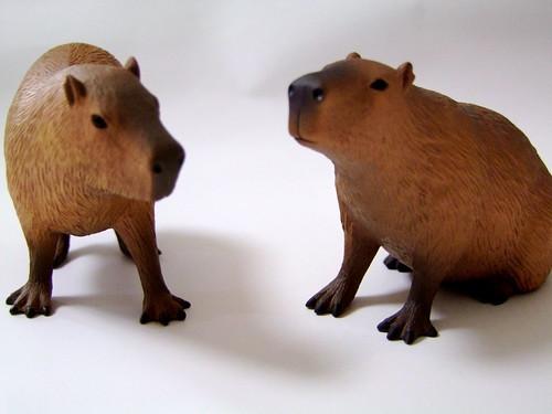 ドキドキどうぶつシリーズ カピバラ/Dokidoki Animal Series Capybara
